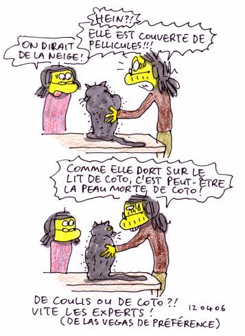 De Coto ou de Coulis ?!