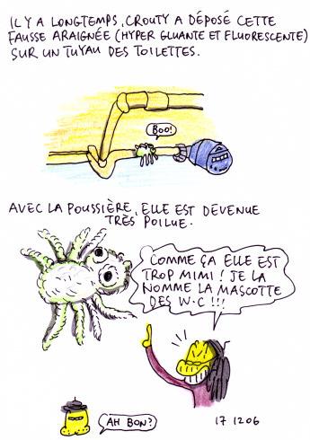 Araignée poilue