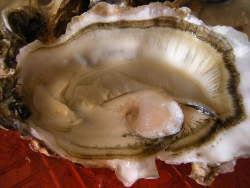 Belle huître