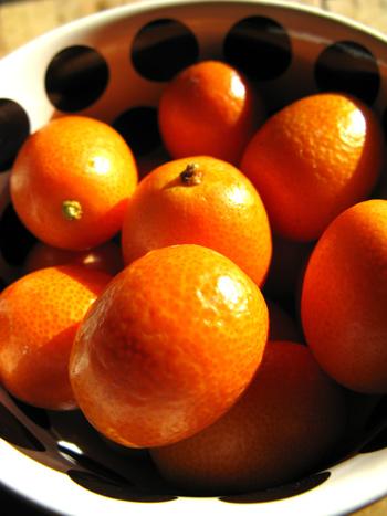 Kumquat & ciboulettes