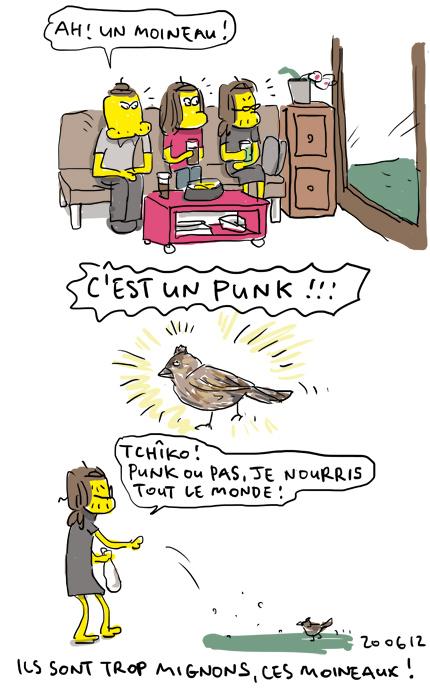 Moineau punk !