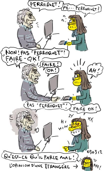 Perroquet - FaireOK