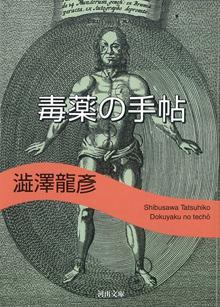 Shibusawa Tatsuhiko
